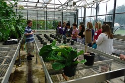 Delaware high school teachers visited UD's Fischer Greenhouse during an educational program hosted by the Delaware Biotechnology Institute.